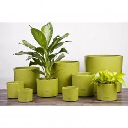 Obal 411 Bambus green 28