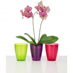 Obal orchidejový 232 Clear Violet 15