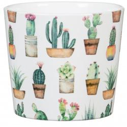 Obal 870 Cactus Garden 09