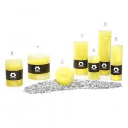 Svíčka Rustik Planta RC515 017 Žlutá (12) 50x150mm (B)