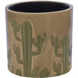 Obal Shine Cactus Cylinder Coffee 08