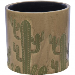 Obal Shine Cactus Cylinder Coffee 11