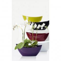 Obal orchidejový 230 Bright Violet 37